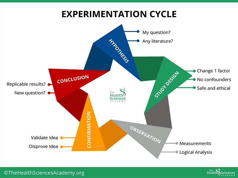 Experimentation Cycle_Self-Experiment_The Health Sciences Academy
