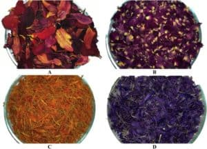 edible-petals-as-a-nutrient-source_the-health-sciences-academy