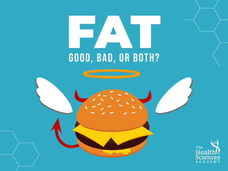 Fat: Good, Bad, or Both?